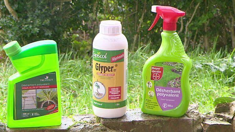 Le glyphosate est l'herbicide le plus utilisé au monde, via le Roundup de Monsanto.