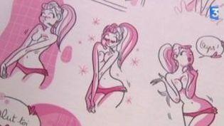 BD érotique : nouvelle vague rose grâce aux femmes  (Culturebox)