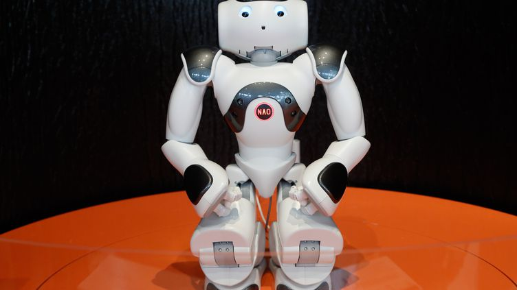 Nao, l'un des robots présents lors de l'exposition Robots à la Cité des Sciences de Paris. (FRANCOIS GUILLOT / AFP)