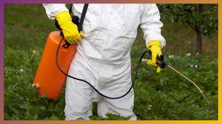 Glyphosate : pourquoi personne n'est d'accord ? (Radio France)