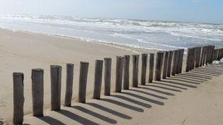 Une plage. (France 3)