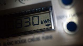 Les tarifs d'EDF auraient déjà dû augmenter le 1er août 2014, mais le gouvernement s'y était opposé. (DAMIEN MEYER / AFP)