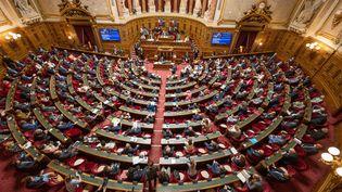 L'hémicycle du Sénat à Paris le 6 février 2021. (SANDRINE MARTY / HANS LUCAS / AFP)