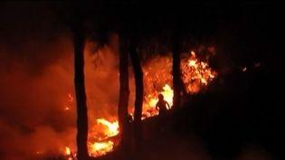 Incendies : l'Espagne touchée à son tour (FRANCE 3)