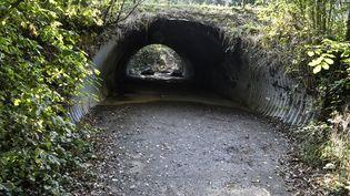 Le chemin par lequel Victorine Dartois devait rentrer chez elle au moment de sa disparition, photographié le 30 septembre 2020 à Villefontaine (Isère). (PHILIPPE DESMAZES / AFP)