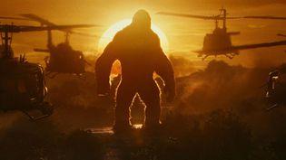 """Kong : Skull Island"" de Jordan Vogt-Roberts  (2017 WARNER BROS. ENTERTAINMENT INC., LEGENDARY PICTURES PRODUCTIONS, LLC AND RATPAC-DUNE ENTERTAINMENT LLC. ALL RIGHTS RESERVED)"