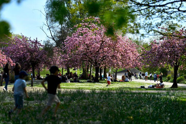 Des enfants jouent au parc floral de Paris, le 18 avril 2018. (GERARD JULIEN / AFP)