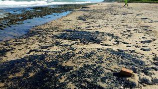 Une photo de la marée noire sur la plagePontal de Coruripe (nord-est du Brésil), le 7 octobre 2019. (HO / IBAMA / AFP)