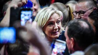 La présidente du Rassemblement national Marine Le Pen lors d'un meeting le 16 mai 2019 à Fessenheim (Haut-Rhin) (FREDERICK FLORIN / AFP)