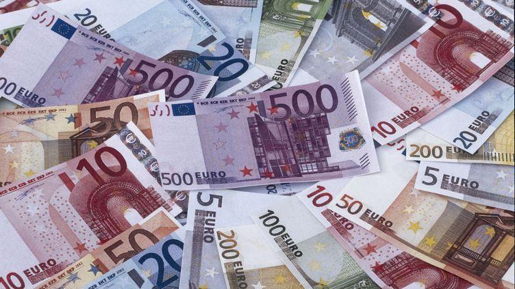 Les anciens billets d'euros ne seront plus les seuls en circulation. (SUPERSTOCK / SIPA)