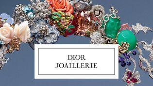 Couverture livre Dior Joaillerie  (Dior Joaillerie)