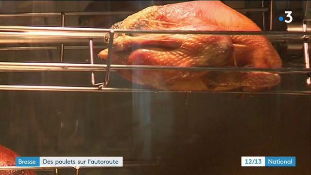 Bresse : des poulets sur l'autoroute