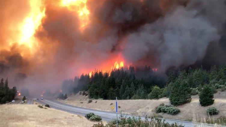 Un nouvel incendie fait rage dans les forêts du nord de la Californie, le 5 septembre 2018, après un été marqué par uneune vague d'incendies particulièrement violents et précoces. (SOCIAL MEDIA / REUTERS)