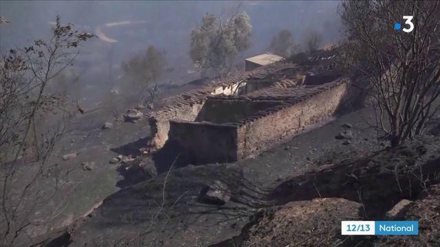 Incendies : les évacuations se multiplient au Portugal