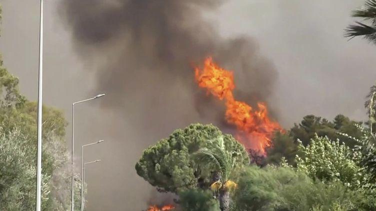 Vague de chaleur : de nombreux pays touchés par des incendies. (FRANCEINFO)