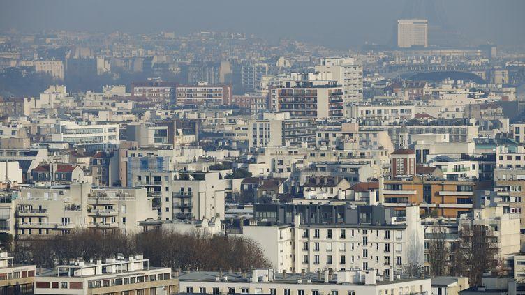Photo prise depuis le parc de Saint-Cloud (Hauts-de-Seine) le 12 décembre 2013, où l'on distingue la tour Eiffel derrière un nuage de pollution. (THOMAS SAMSON / AFP)