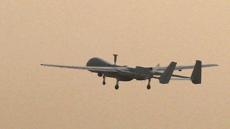 Un drone Harfang français, ici photographié en Afghanistan en décembre 2010. Deux de ces appareils auraient été déployés au Mali en janvier 2013 pour participer à l'opération Serval. (JOEL SAGET / AFP)