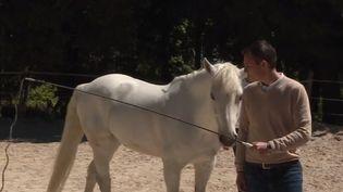 De nombreuses techniques existent pour apprendre à gérer son stress. L'une d'elle propose un cheval comme médiateur. France 3 s'est rendu à Saint-Cyr-sur-Loire (Indre-et-Loire) pour découvrir cette méthode inattendue. (FRANCE 3)