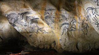 A la fin du parcours, le visiteur fasciné découvre les œuvres les plus monumentales de la grotte, tracées d'un coup, sans aucune rature par les Aurignaciens et reproduites parfaitement par les peintres. (JEROMINE SANTO GAMMAIRE / FRANCETV INFO )