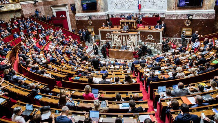 L'Assemblée nationale, à Paris, le 31 juillet 2018. (MAXPPP)