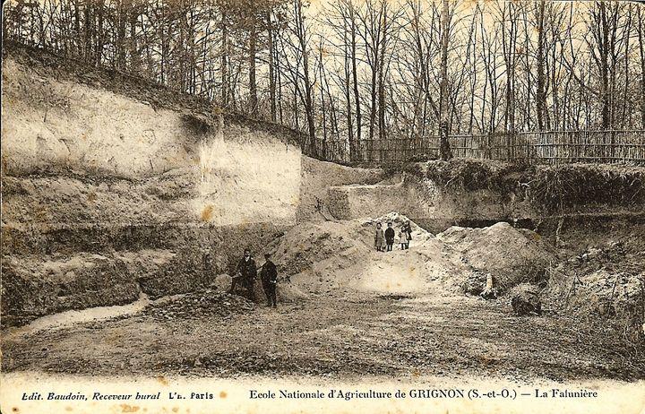 Carte postale d'époque montrant la falunière de Grignon. (DR)