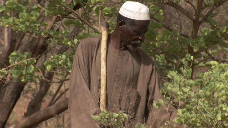 A 80 ans, le cultivateur burkinabè Yacouba Sawadogo,surnommé «l'homme qui a arrêté le désert» a été récompensé par le Nobel Alternatif 2018. (Photo/Prix Right Livelihood)