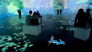 """L'exposition """"Monet, l'experience immersive"""" à Bruxelles jusqu'en avril 2020. (EXHIBITION HUB)"""