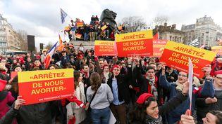 Des manifestants anti-IVG participent à la Marche pour la vie, dimanche 19 janvier 2014,à Paris. (MICHEL STOUPAK / CITIZENSIDE.COM /AFP)