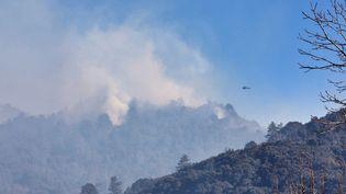 Incendie à Sampolo, en Corse, le 24 février 2019. (JEAN-PIERRE BELZIT / MAXPPP)