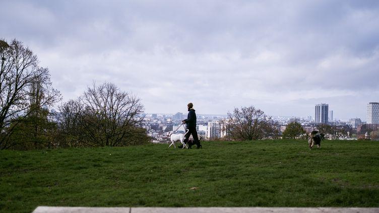 Un homme promène son chien dans le parc Jean-Moulin - Les Guilands, à Montreuil (Seine-Saint-Denis), le 14 novembre 2020. (NOEMIE COISSAC / HANS LUCAS / AFP)