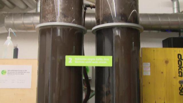 VALLET_Engrais naturel_Urine labo