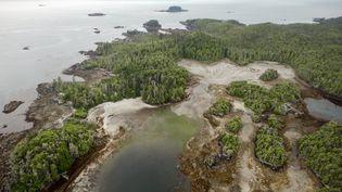L'île Triquet, dans la province de Colombie-Britannique, dans le sud-ouest du Canada. (Keith Holmes / Hakai Institute)