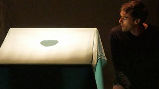 """Emmanuel Noblet dans """"Réparer les vivants"""", Avignon 2015  (Laurence Houot / Culturebox)"""