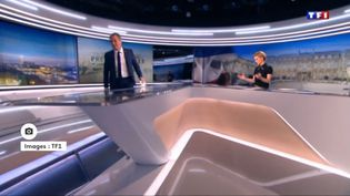 Nicolas Dupont-Aignan quitte le plateau de TF1, samedi 18 mars 2017. (TF1)