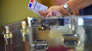 En France, les élections européennes se dérouleront le 26 mai. (LOIC VENANCE / AFP)