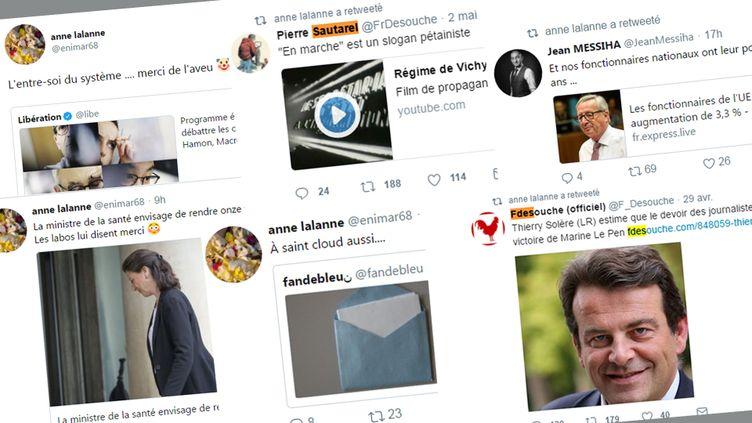 Des twwets et retweets émis depuis le compte Twitter d'Anne Lalanne. (FRANCEINFO / RADIOFRANCE)