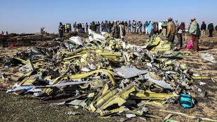 Un tas rassemblant les débris du crash du Boeing 737 de laEthiopian Airlinesprès deBishoftu (Ethiopie), le 11 mars 2019. (MICHAEL TEWELDE / AFP)
