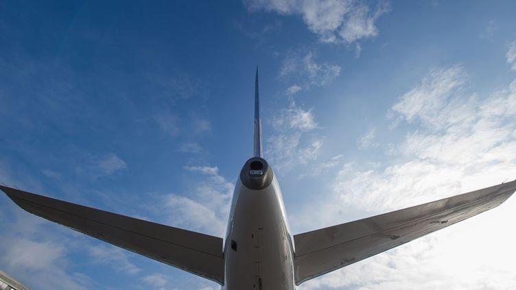 (Un drone a frôlé un Airbus A320 © MaxPPP)
