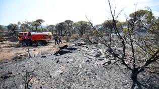 Des sapeurs-pompiers interviennent dans la forêt des Mayons dans le Var où les flammes ont été maîtrisées après cinq jours de lutte acharnée le 20 août 2021. (SYLVAIN THOMAS / AFP)