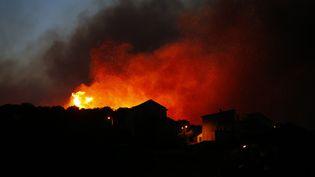 Les flammes ravagent la commune de Biguglia (Haute-Corse), le 24 juillet 2017. (PASCAL POCHARD-CASABIANCA / AFP)
