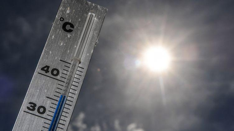 Près de Lille, le mercure atteint les 37°C, le 24 juin 2019 (PHILIPPE HUGUEN / AFP)