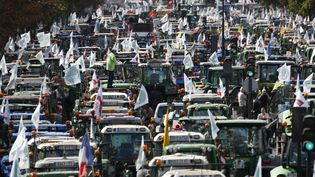 Des milliers d'agriculteurs venus manifester place de la Nation, à Paris, le 3 septembre 2015. (THOMAS SAMSON / AFP)