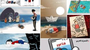 La mort d'un petit réfugié syrien, Aylan Kurdi, a fait le tour du monde. Des dessinateurs de presse de nombreux pays sont revenus sur les photos du drame. (MONTAGE FRANCETV INFO)