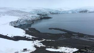 Le glacier Collinssur l'île du Roi-George, en Antarctique, le 2 février 2018. (MATHILDE BELLENGER / AFP)