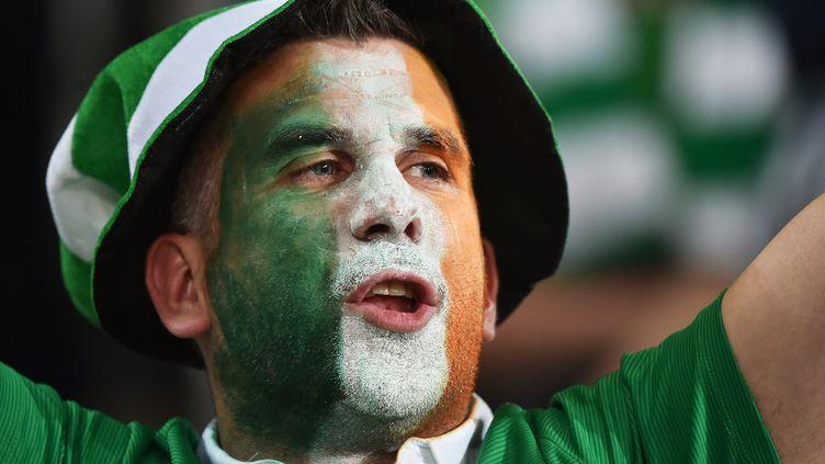 Les supporters irlandais vont être récompensés.
