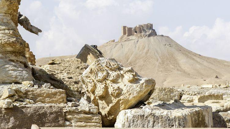 Des ruines de la cité de Palmyre (Syrie), le 4 mars 2017. (LOUAI BESHARA / AFP)