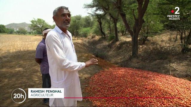 Coronavirus : le spectre de la famine en Inde