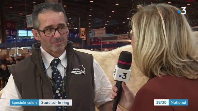 Edition spéciale Salon de l'Agriculture : les stars du ring