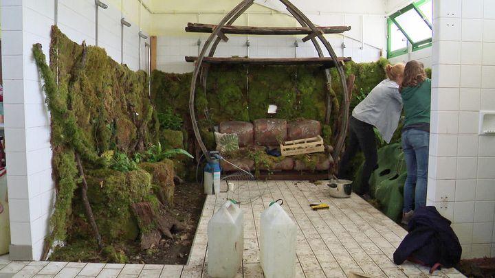 Les Jardins respectueux envahissent les douches de l'ancienne piscine de Cognac (France  3 Nouvelle Aquitaine)